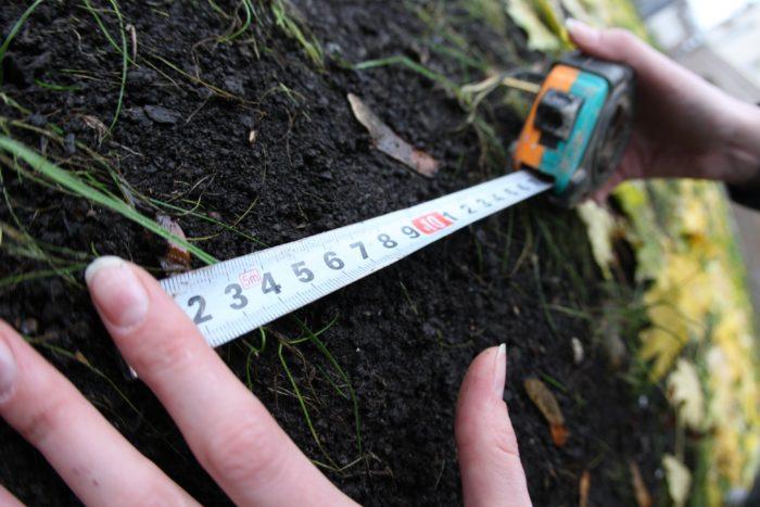 Принцип выделения земли в Ленинградской области