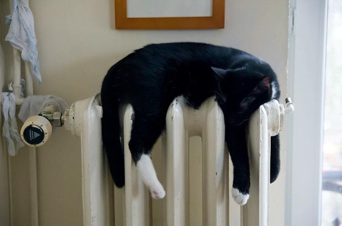 Куда жаловаться, если в квартире не работает отопление?