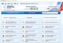 Особенности оформления загранпаспорта через сайт Государственных услуг